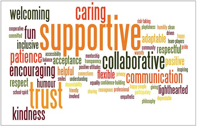 Staff description of a positive culture